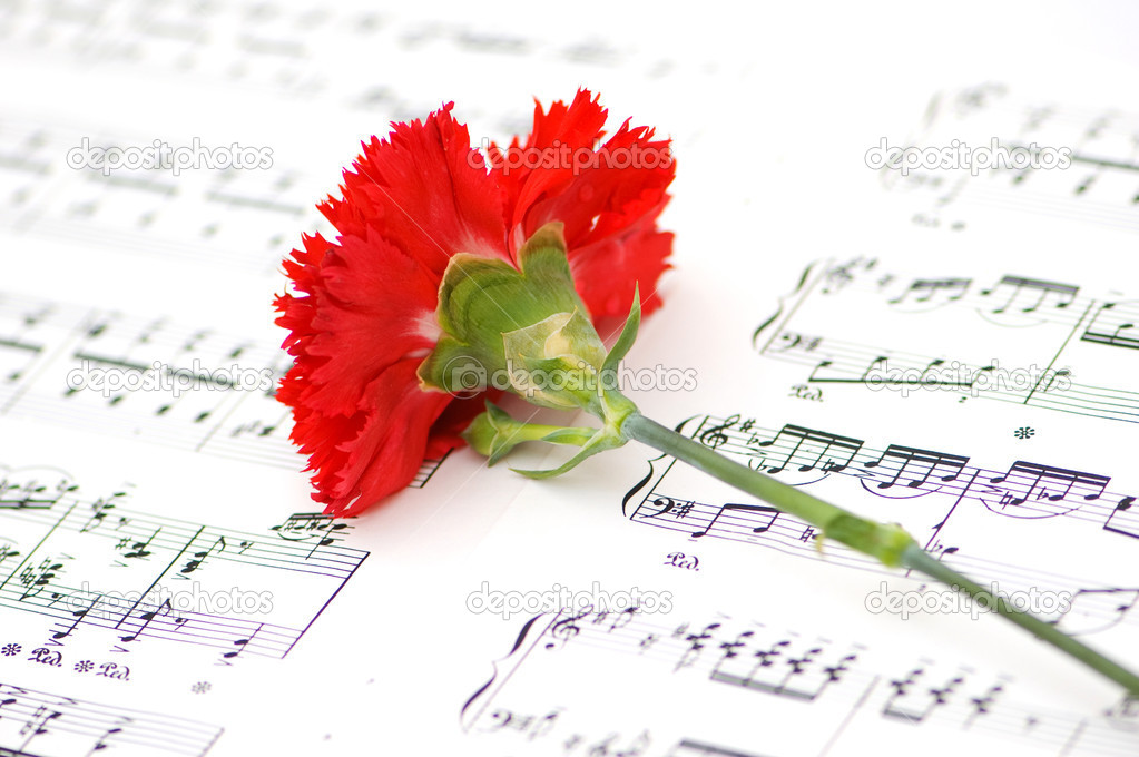 Red carnation flower on musical notes stock photo elnur 1636609 red carnation flower on musical notes stock photo ccuart Images