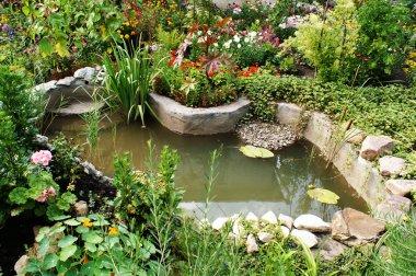 Green; pond; stream; water; stones; stock vector