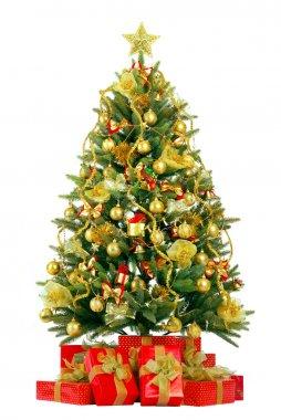 Christmas fir tree with colorful lights
