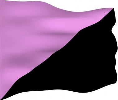 Anarchist Queer Flag