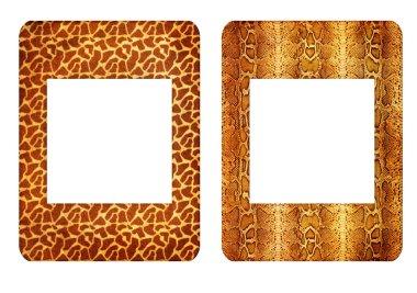 Zoo frames