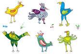 Colorful cute birds 2