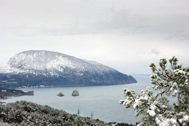Sea bay with snowy mountain