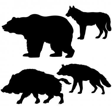 Wild boar, bear, wolf, hyena