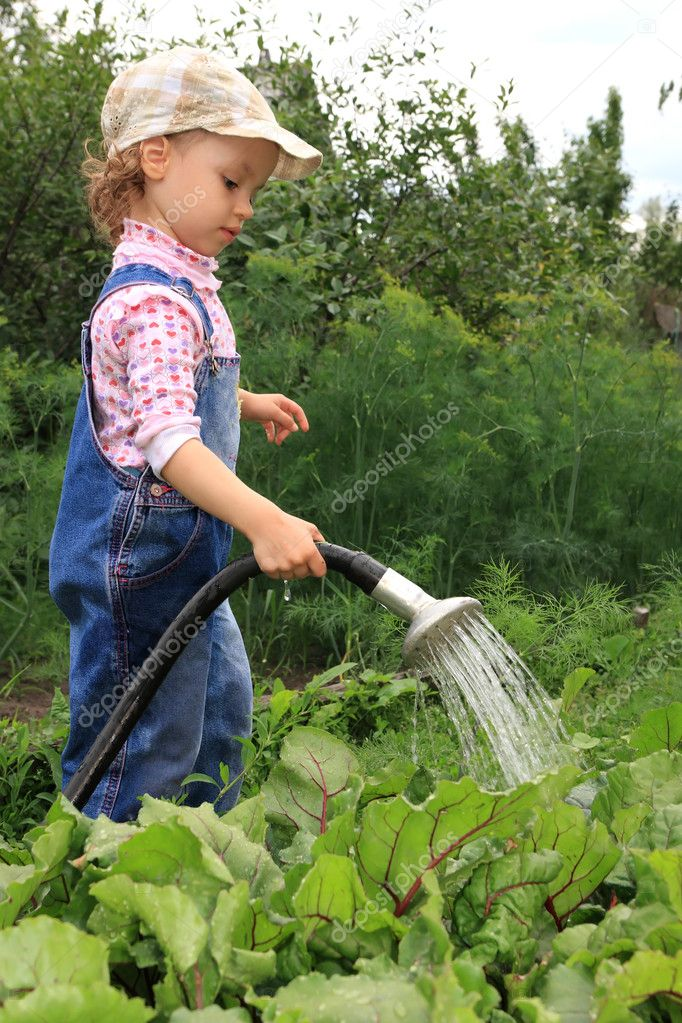 Girl pours a vegetable garden.