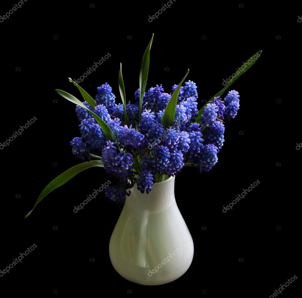 Beautiful Blue Flowers In The White Vas Stock Photo Vvvera 1253915