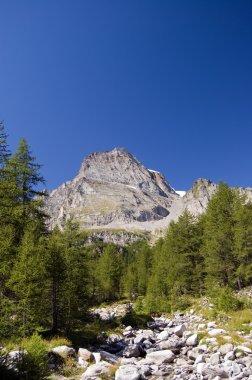 Alpine natural paradise