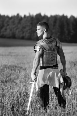 One Roman soldier in field.