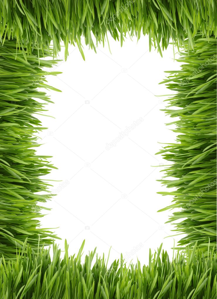 Tall grass border or frame stock photo gvictoria 1242733 for Tall grass border