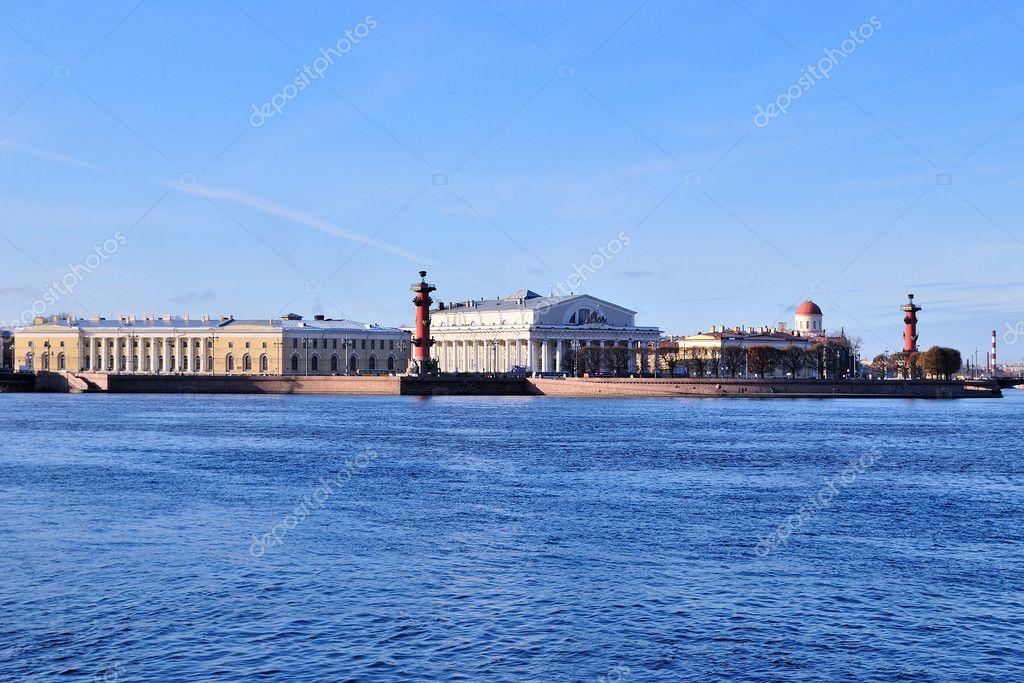 St. Petersburg. Neva and the Vasilevsky