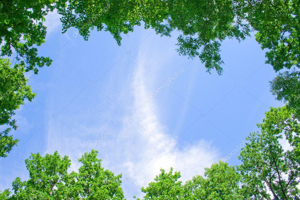 Natural framework