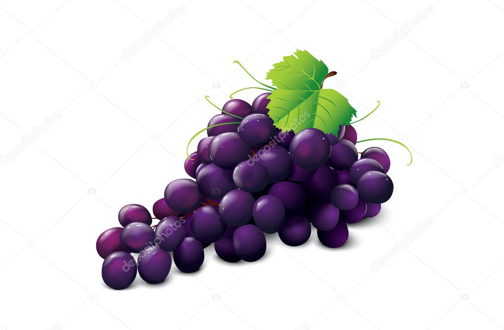 Ripe grape