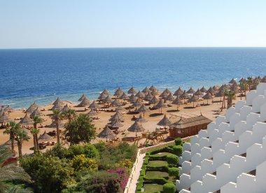 Beach at hotel in Sharm el Sheikh