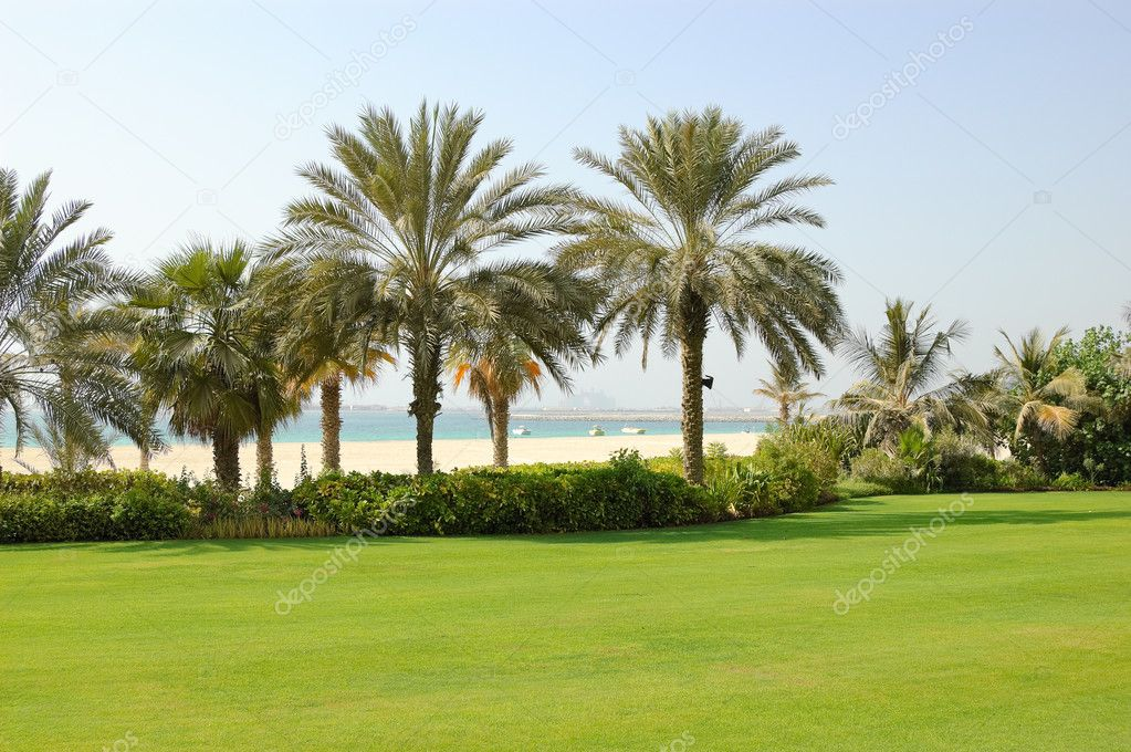 Beach of luxury hotel