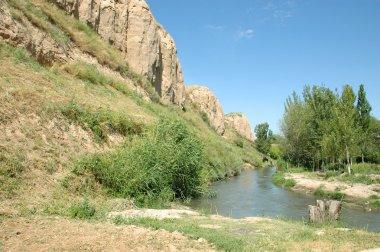 Oasis in the desert Kyzyl Kum