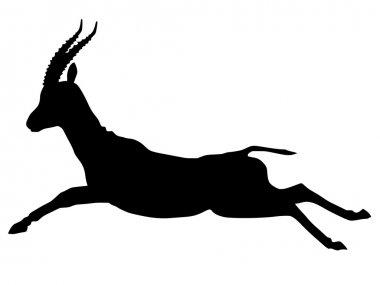 Silhouette of gazelle