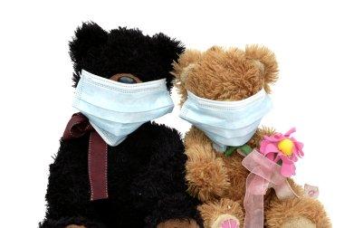 Teddy bears in mask