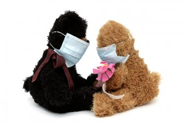 Teddy bears talking in masks
