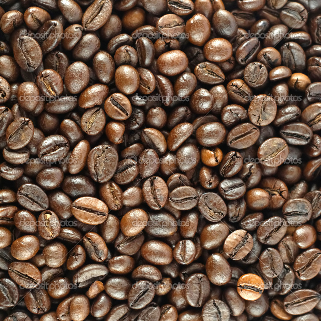 coffee beans ethnographic essay