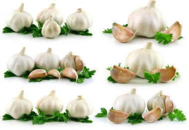 Collection of Garlic Vegetable with Gree