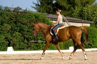 Young girl riding on chestnut horse