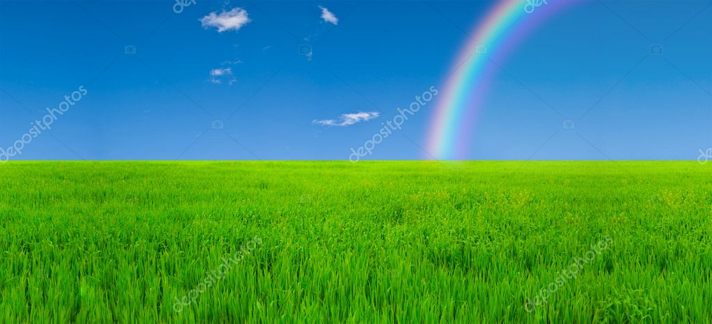 Field and rainbow