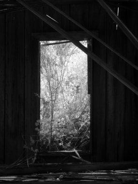 Doors and Windows 3