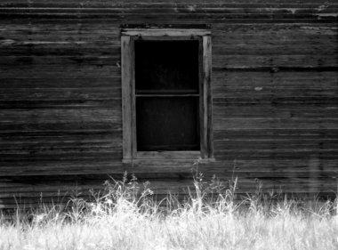 Doors and Windows 5