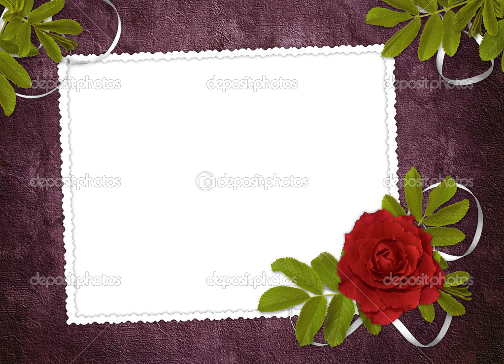 White frame with rose and ribbons