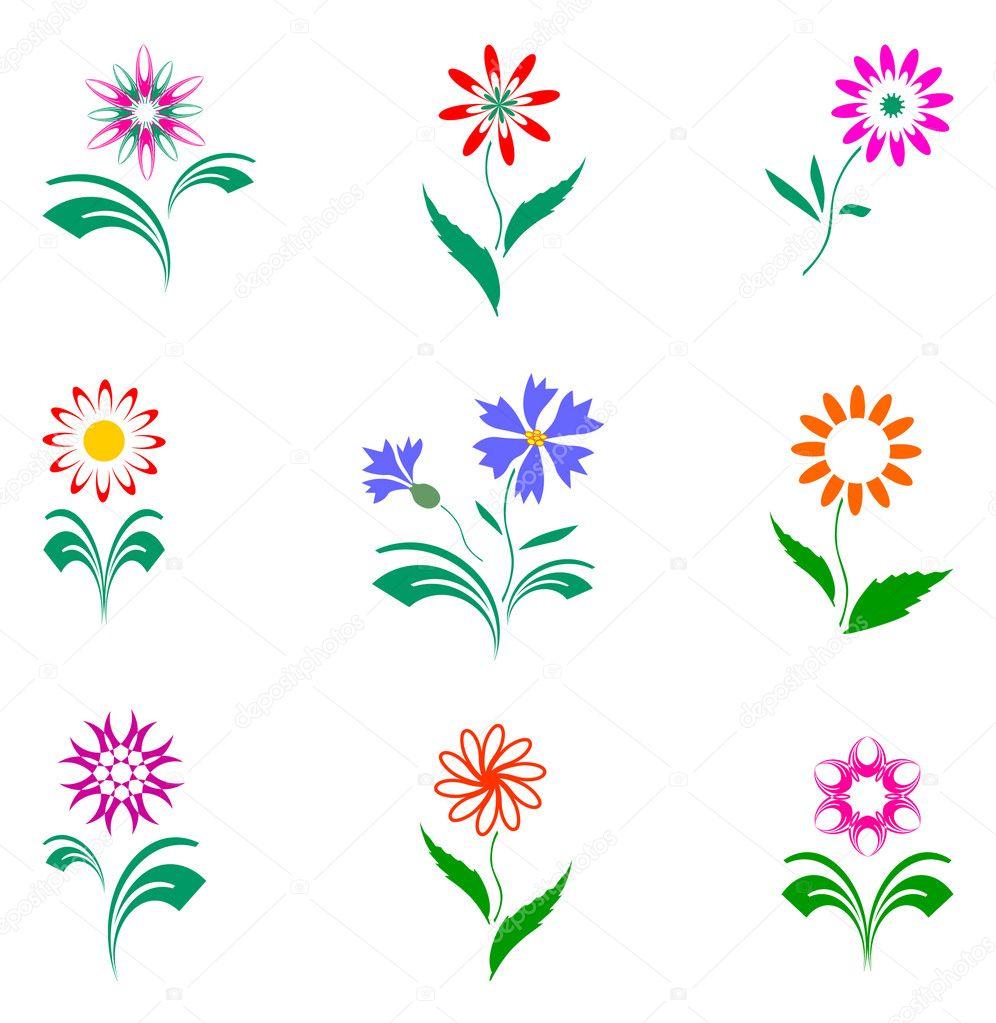 Flowers set, design elements.