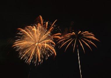 Long exposure of multiple fireworks