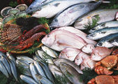Fresh raw fish presented for sale
