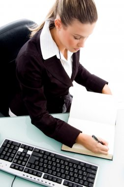 Professional woman maintaining diary