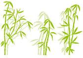 Fényképek Bambusz, vektor