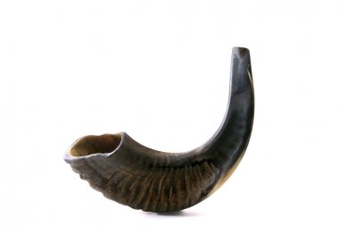 Black shofar