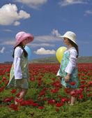 dvě dívky v červeném poli