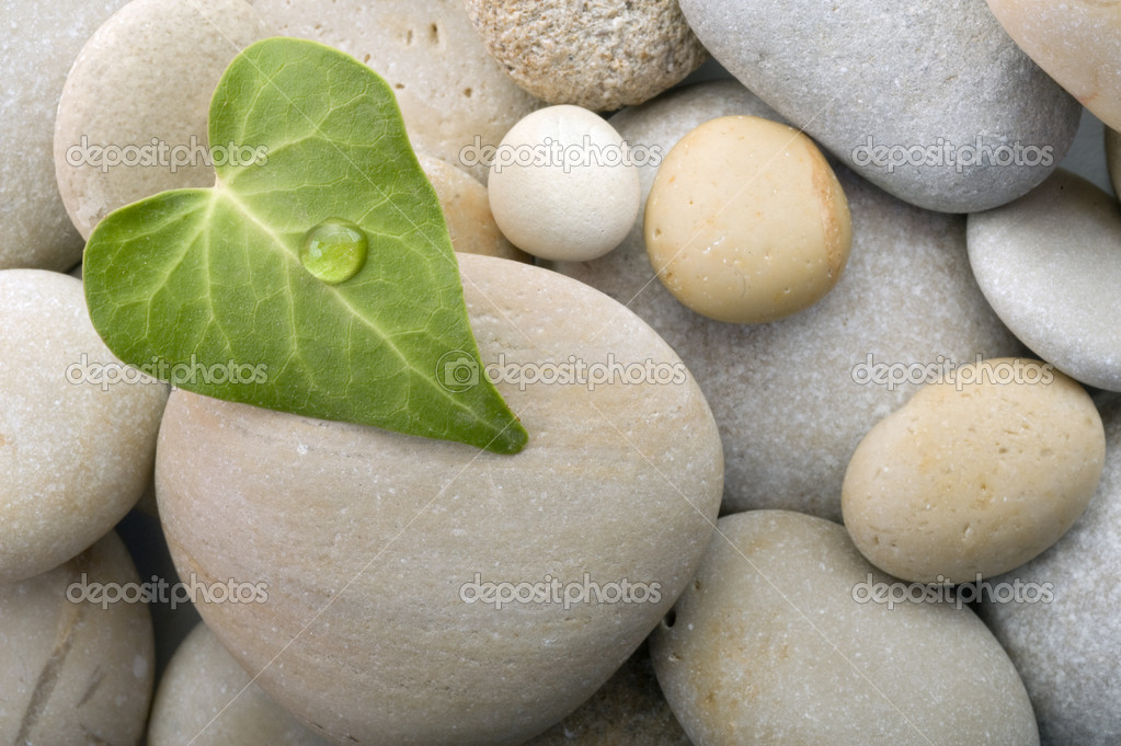 Heart leaf pebbles background