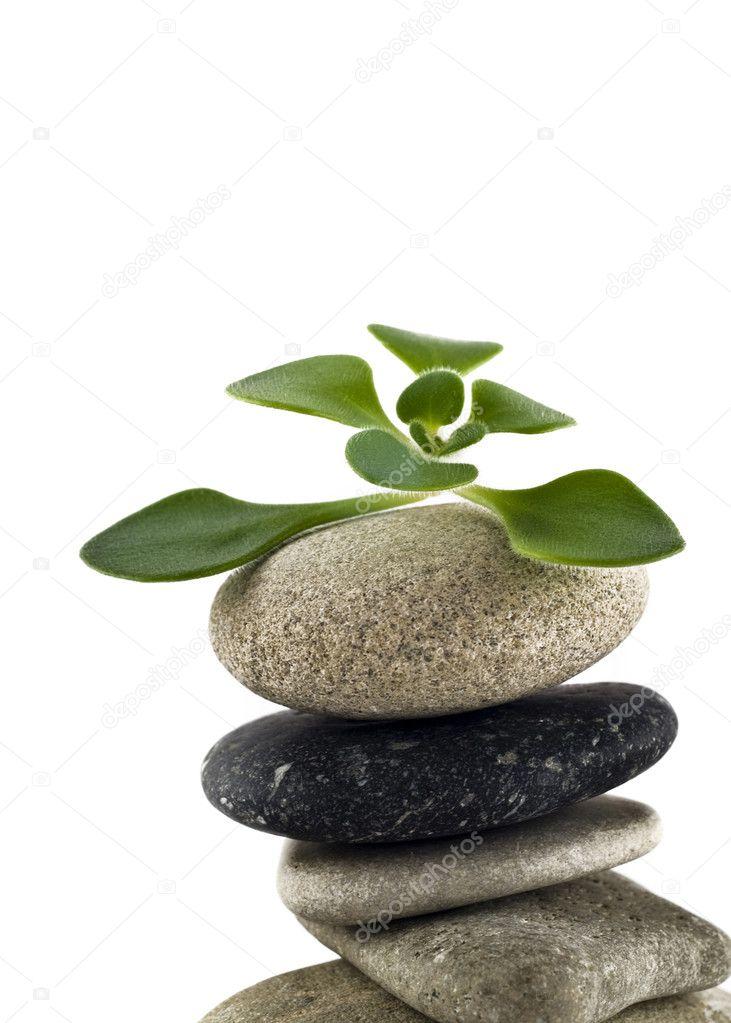 Green Life - balanced stone tower
