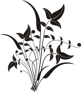 Floral design elements illustration