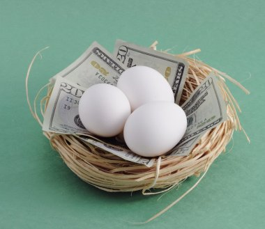 Nest with Money and Eggs