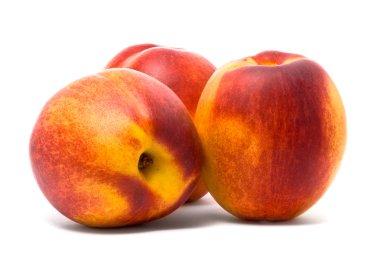 Three beautiful juicy nectarines
