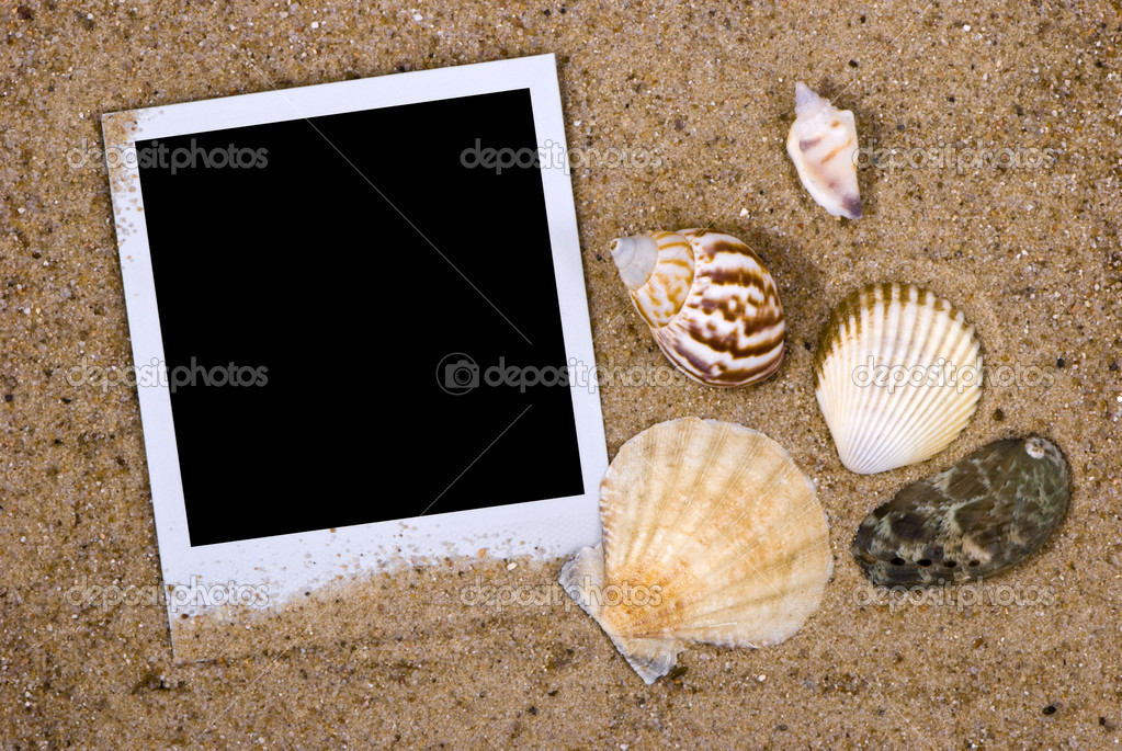 Photo frame with sea shells