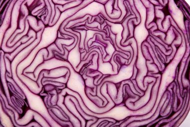 Close-up of a cut red cabbage