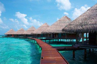 Island in the Ocean. Paradise!