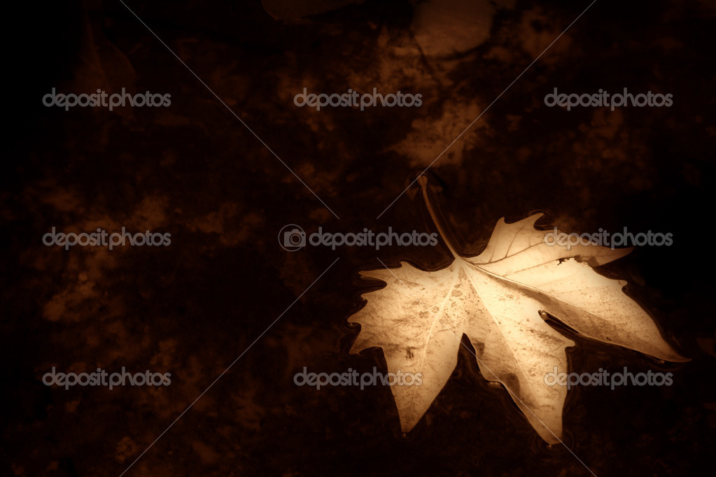Autumn background sepia