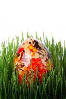 Easter egg in grass isolated on white