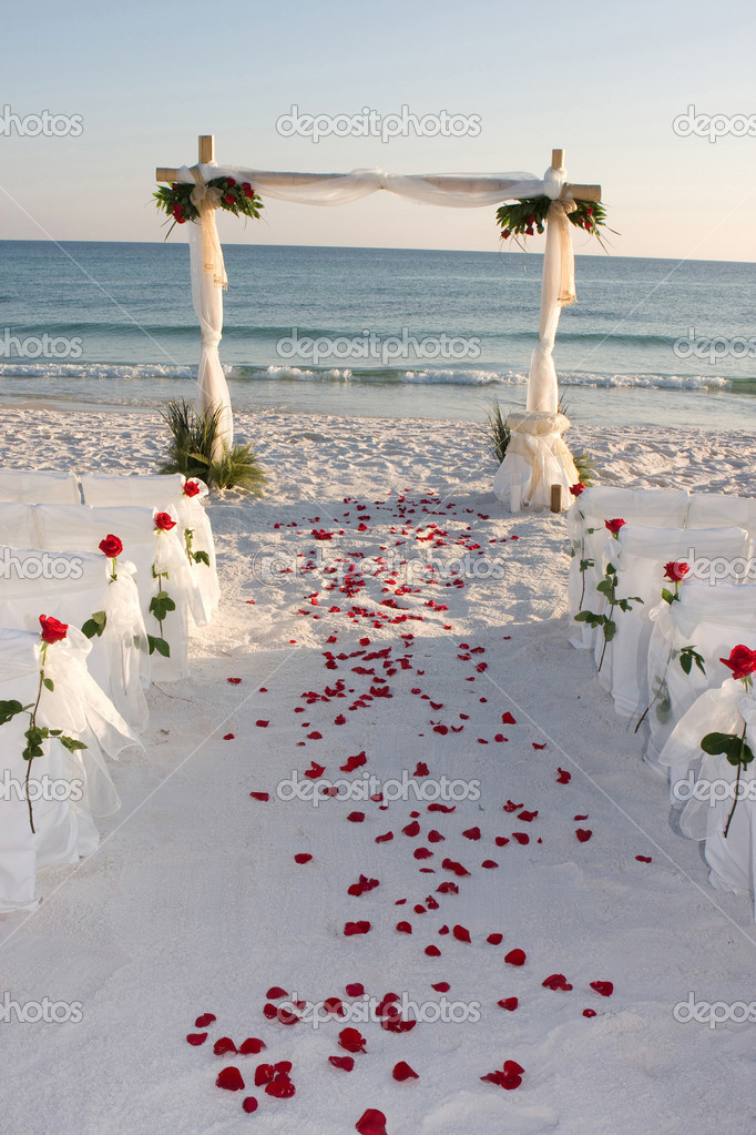 Beach Wedding Path Rose Petals