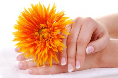 Beautiful french manicure and flower