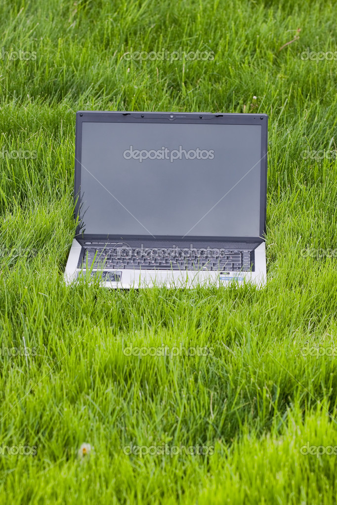 Laptop in the grass with gray color