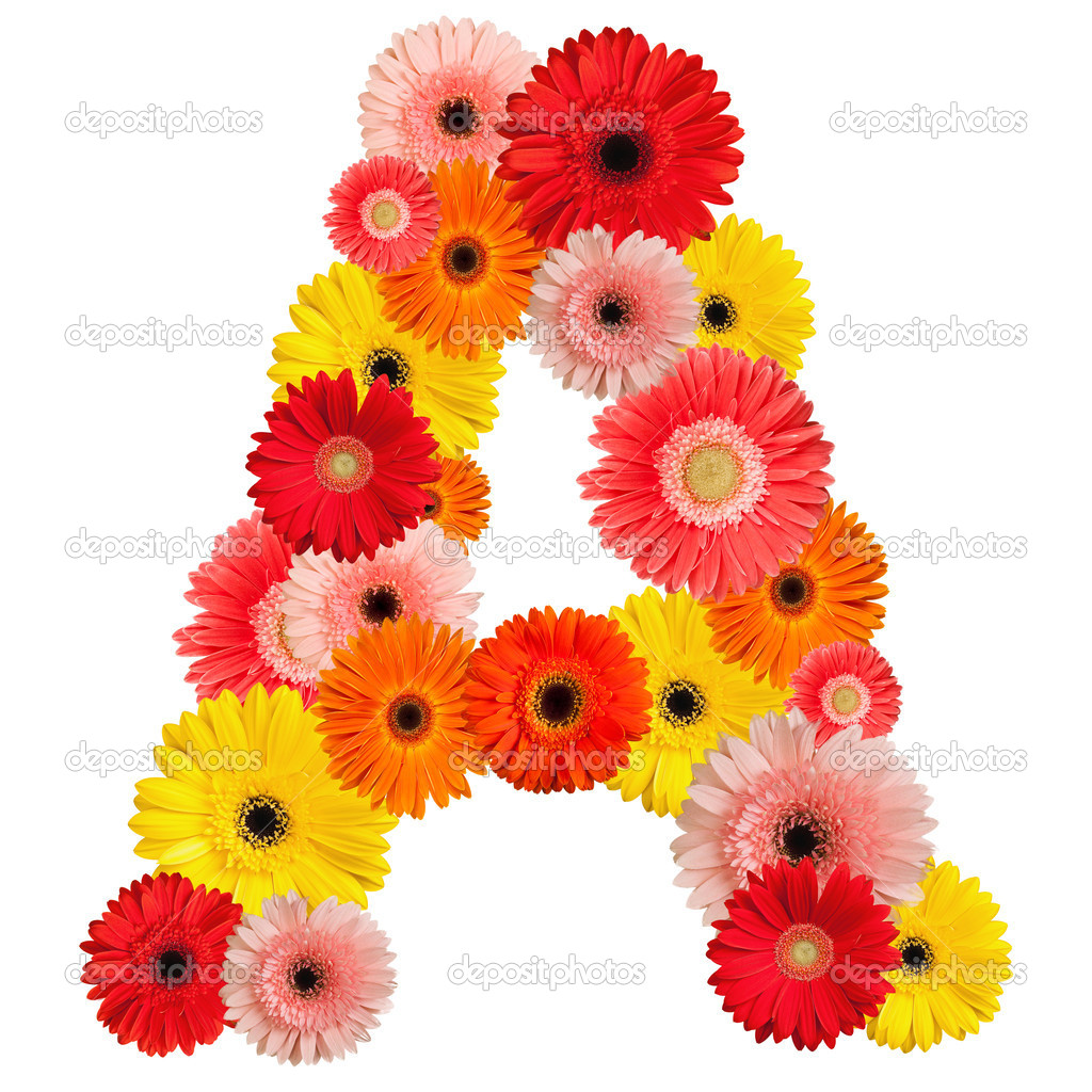 Beautiful Alphabet Of Flowers Stock Photo Jenmax 1624653